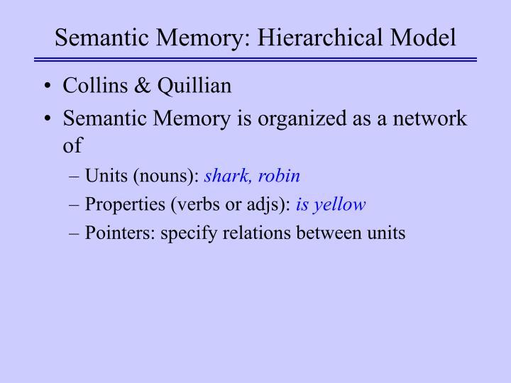 Semantic memory hierarchical model