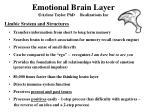 emotional brain layer arlene taylor phd realizations inc