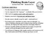 thinking brain layer arlene taylor phd realizations inc