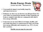 brain energy drain arlene taylor phd realizations inc
