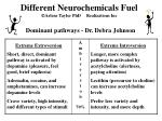 different neurochemicals fuel arlene taylor phd realizations inc