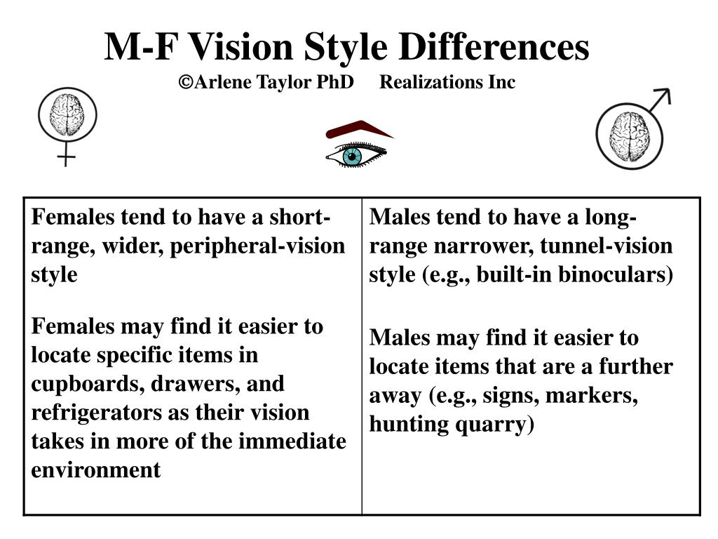 M-F Vision Style Differences