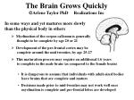 the brain grows quickly arlene taylor phd realizations inc