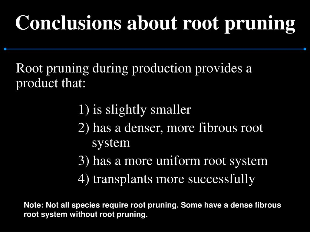 Conclusions about root pruning
