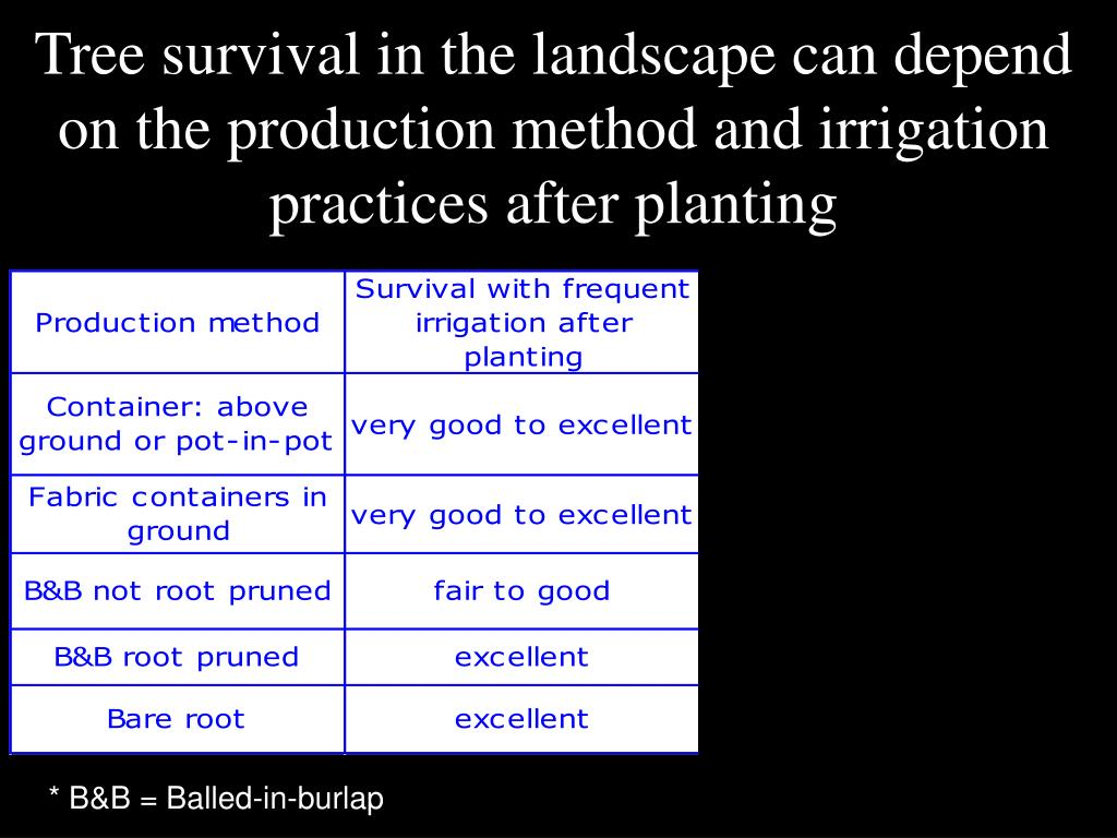 Tree survival in the landscape can depend on the production method and irrigation practices after planting