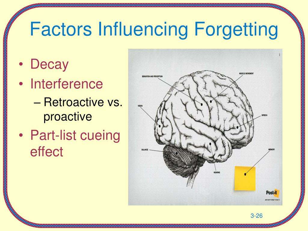 Factors Influencing Forgetting