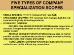five types of company specialization scopes
