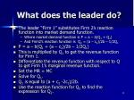 what does the leader do