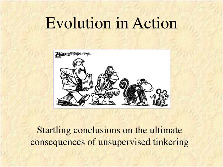 evolution in action n.