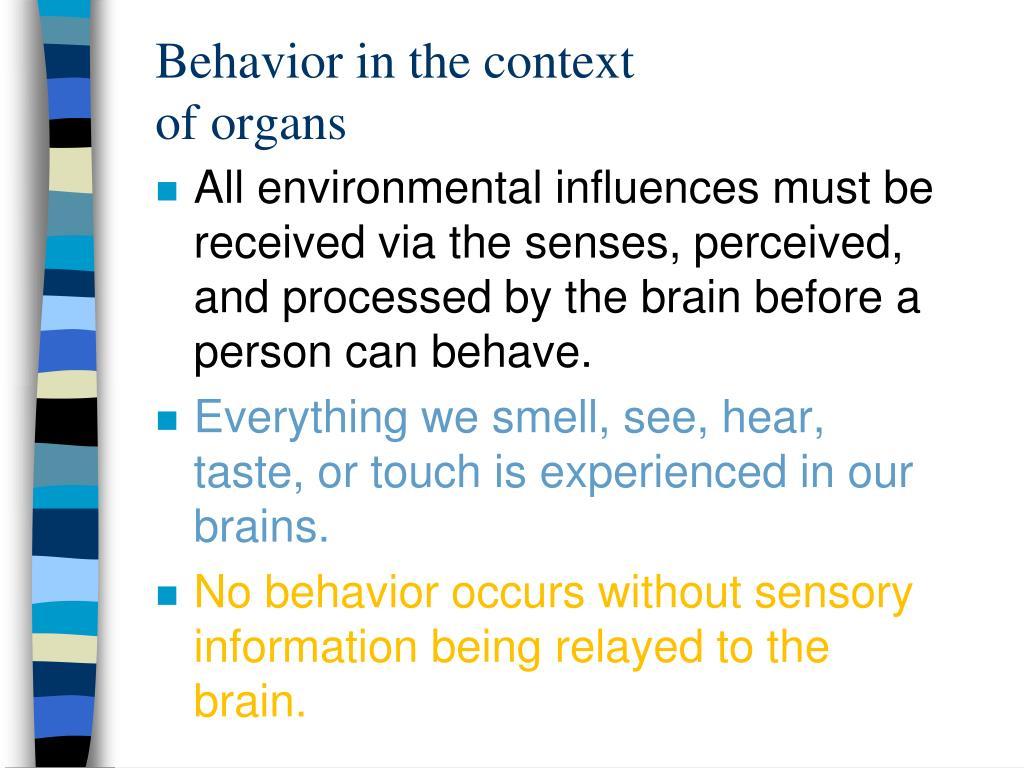 Behavior in the context