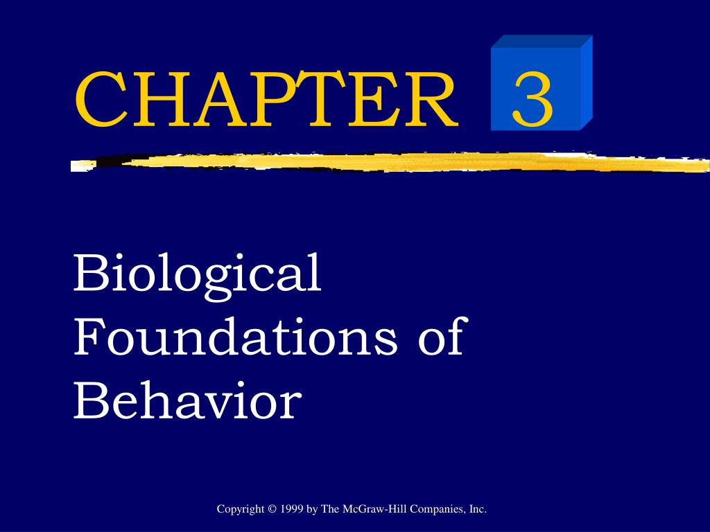 biological foundation of language Unlike most previous work on the evolution of language, biological foundations and origin of syntax follows through on a growing consensus among researchers that language can be profitably separated into a number of related and interacting but largely autonomous functions, each of which may have a distinguishable evolutionary history and.