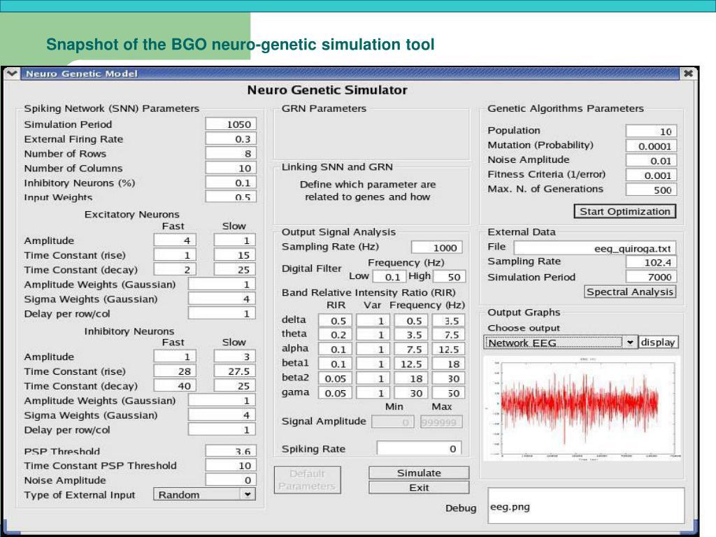 Snapshot of the BGO neuro-genetic simulation tool