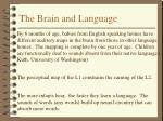 the brain and language
