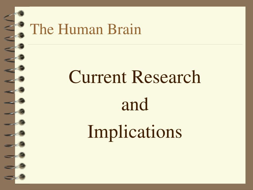 the human brain l.