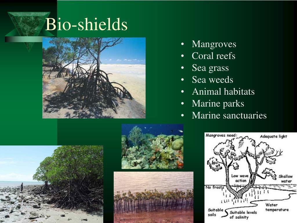 Bio-shields