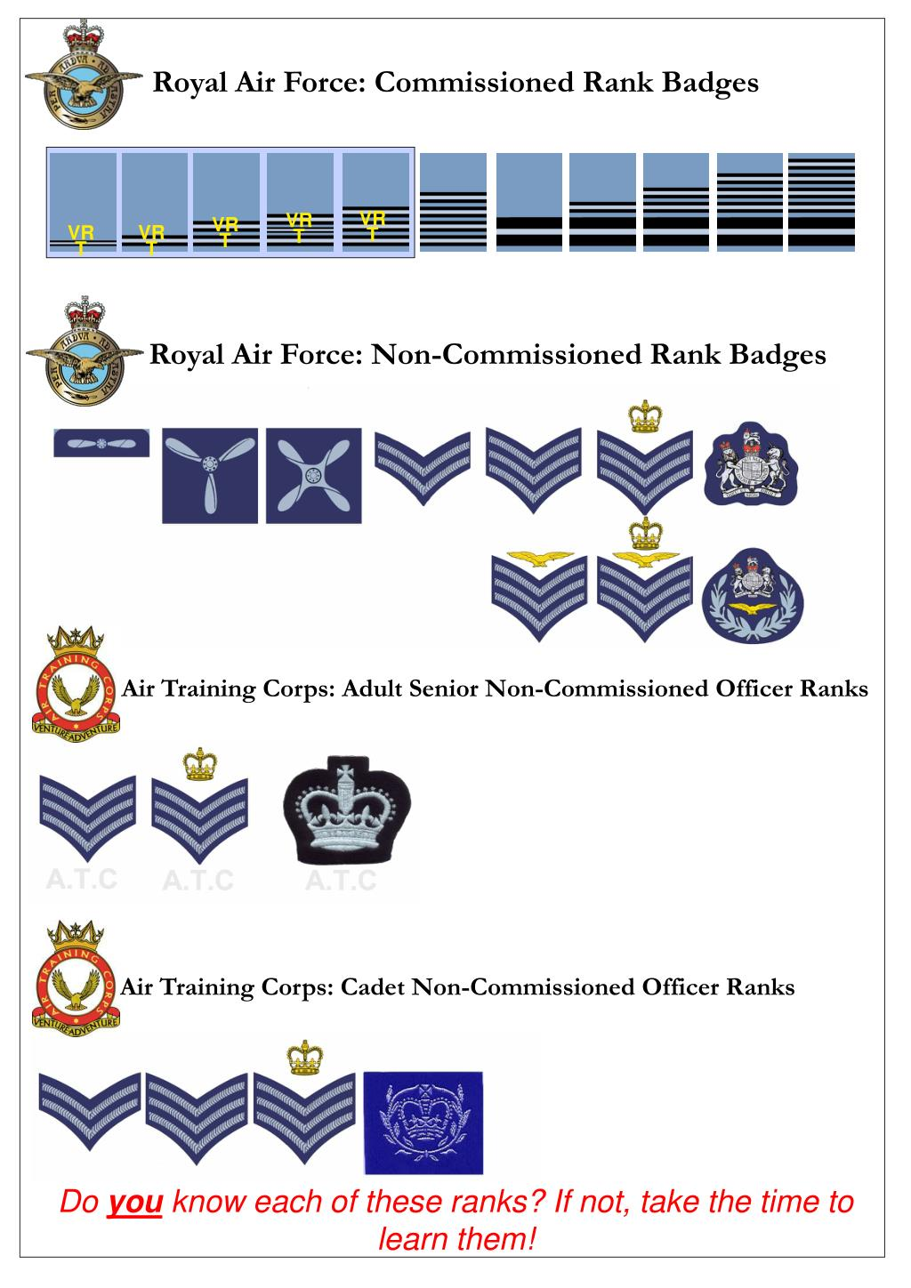 PPT - Royal Air Force: Commissioned Rank Badges PowerPoint