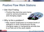 positive flow work stations