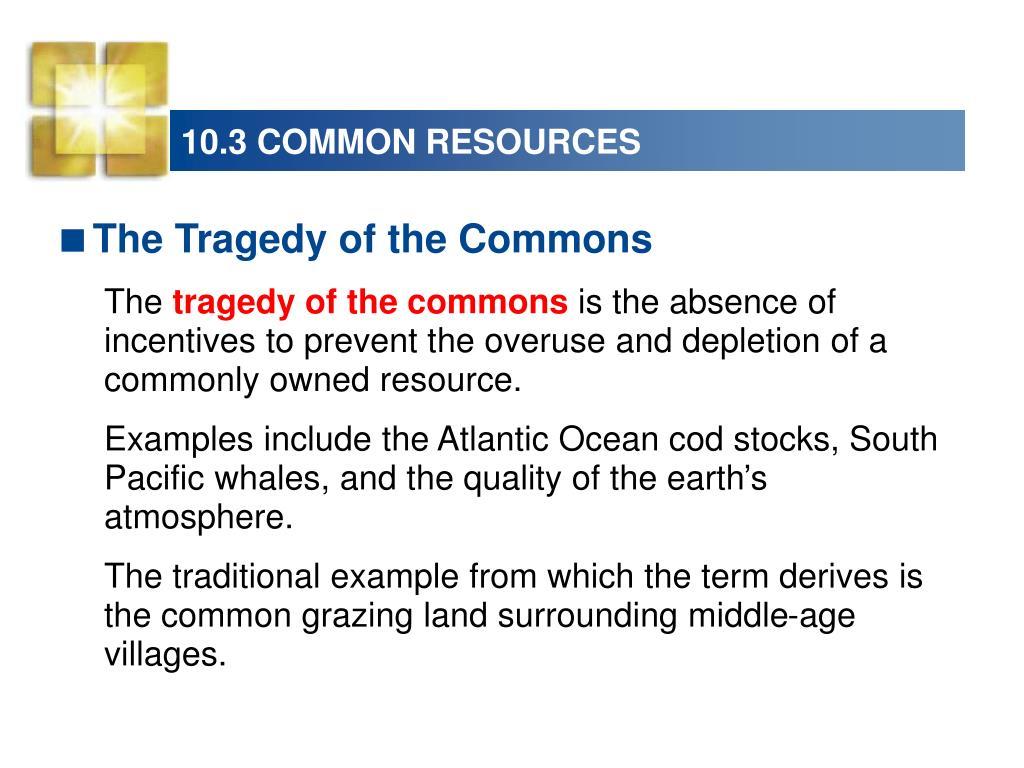 10.3 COMMON RESOURCES