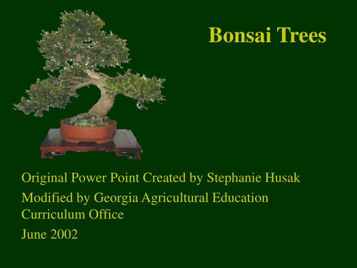 bonsai trees n.