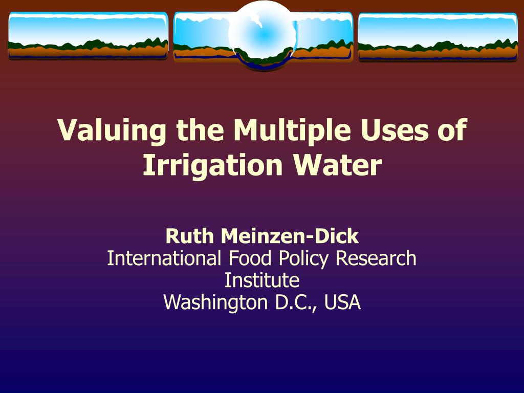 valuing the multiple uses of irrigation water l.