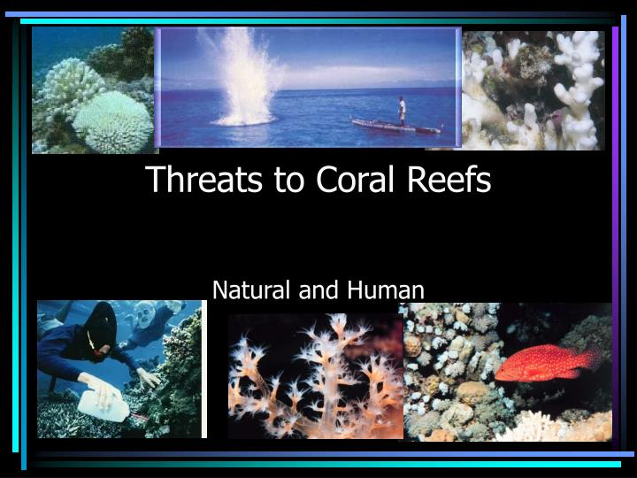 threats to coral reefs n.
