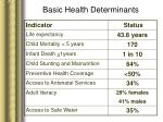 basic health determinants