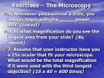 exercises the microscope28