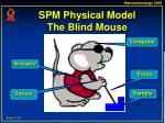 spm physical model the blind mouse