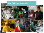summary the joy of being a scientist56