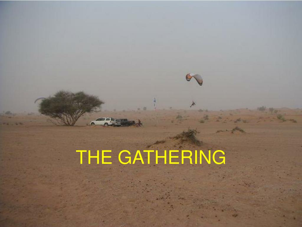 the gathering l.