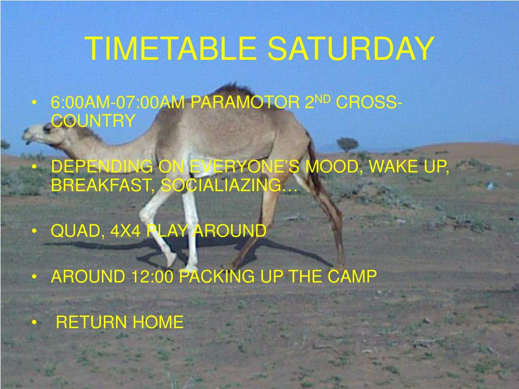 TIMETABLE SATURDAY