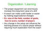 organization learning