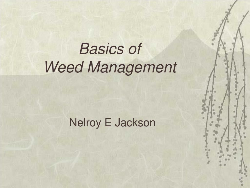 basics of weed management l.