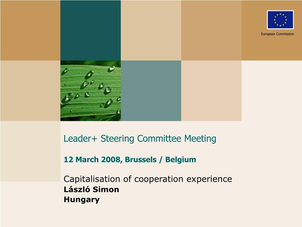 leader steering committee meeting 12 march 2008 brussels belgium l.