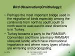 bird observation ornithology