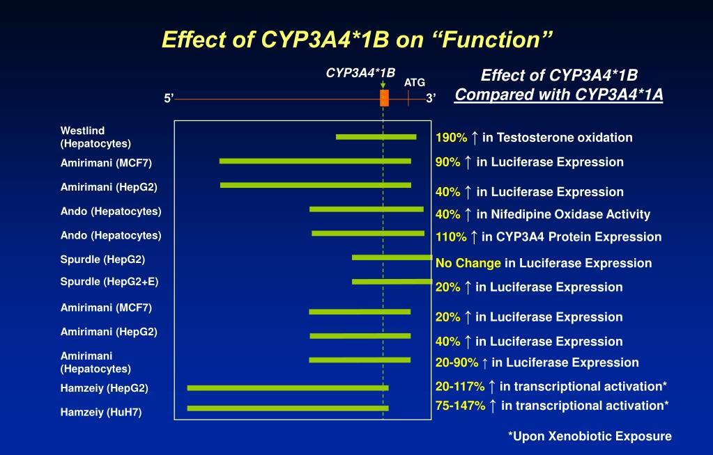 """Effect of CYP3A4*1B on """"Function"""""""