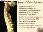 spinal column injuries