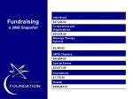 fundraising a 2008 snapshot