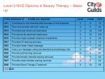 level 3 nvq diploma in beauty therapy make up55