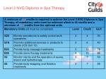 level 3 nvq diploma in spa therapy