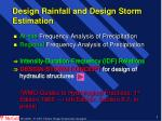 design rainfall and design storm estimation
