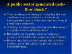 a public sector generated cash flow shock