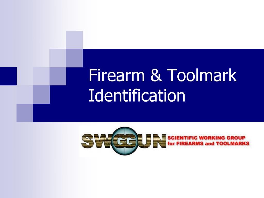 firearm toolmark identification l.