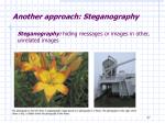another approach steganography