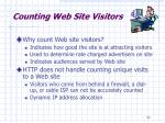 counting web site visitors