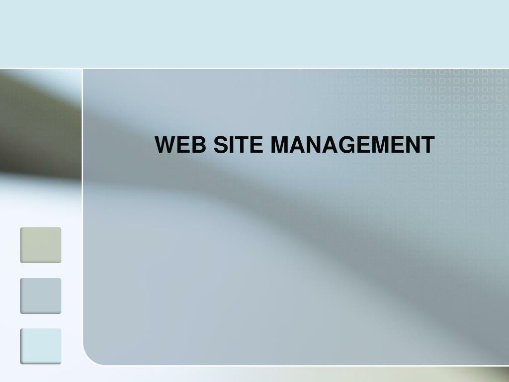 WEB SITE MANAGEMENT