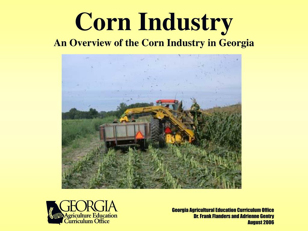 corn industry an overview of the corn industry in georgia l.