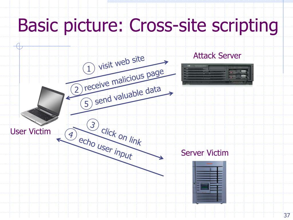 Basic picture: Cross-site scripting
