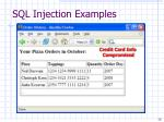 sql injection examples26