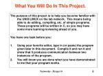what you will do in this project